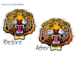 Professional Embroidery Digitizer | Embroidery Digitizing Services