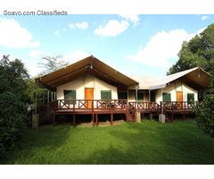 Masai Mara Leisure Camp